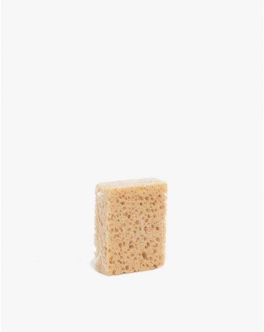 Schwamn (sponge)